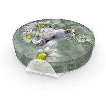 Daisy the Baby Goat Watercolor Painting Coaster Set