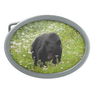Daisy The Black Bear; No Text Oval Belt Buckles