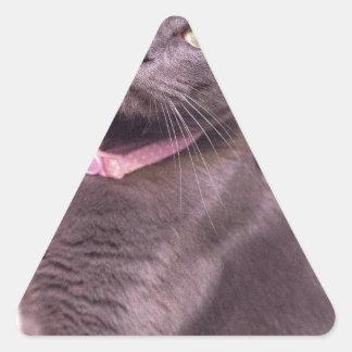 Daisy the Cat Triangle Sticker