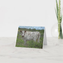 Daisy the Cow Note Cards