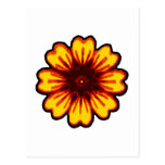 Daisy transp The MUSEUM Zazzle Gifts Postcard