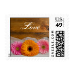 Daisy Trio Country Love Wedding Postage Stamp