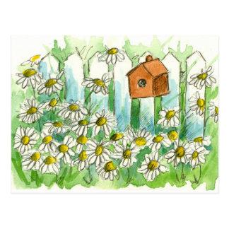 Daisy Watercolor Flowers Bird House Postcard