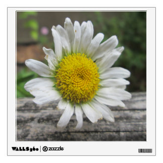 Daisy Weathered Flower Wall Decal