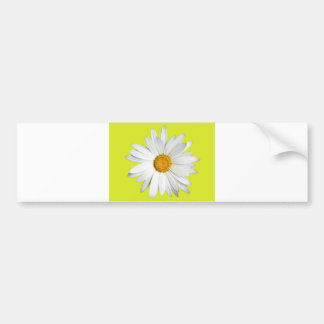 Daisy with Lime Green Background Bumper Sticker