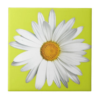 Daisy with Lime Green Background Tile
