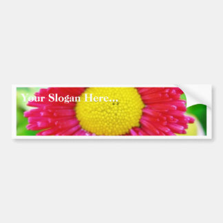 Daisy Yellow Red Close Up Car Bumper Sticker