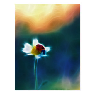 Daisybug Postcard