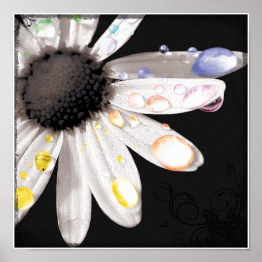 Daisydewdrops Impresiones