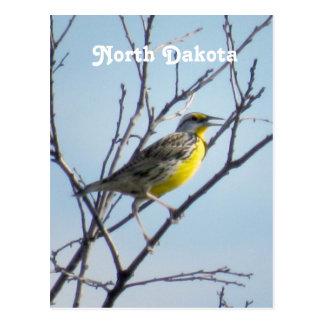 Dakota del Norte Tarjetas Postales