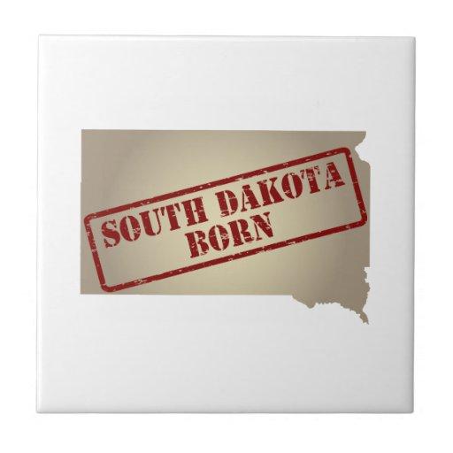 Dakota del Sur llevado - sello en mapa Teja