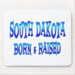 Dakota del Sur llevado y aumentado Alfombrillas De Ratón