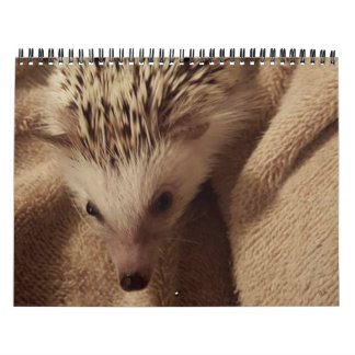 Dakota,Gizmo & Friends! Calendar