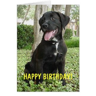 Dakota - Happy Birthday Card