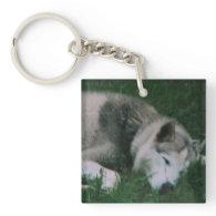 Dakota The Dog Acrylic Keychain