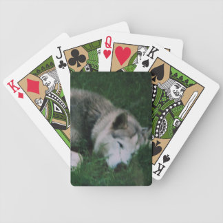 Dakota The Dog Bicycle Playing Cards