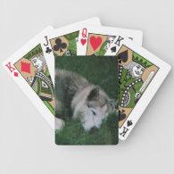 Dakota The Dog Bicycle Poker Cards