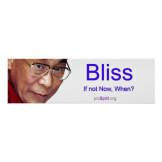 Dalai Lama - Enlightenment Poster
