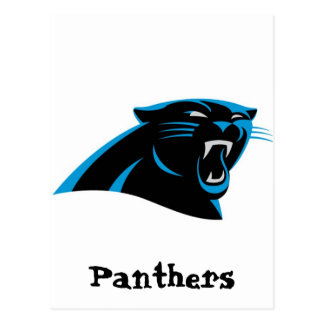 Dale City Sports Club Panthers Under 6 Postcard