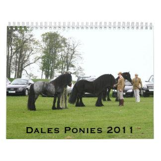 Dales Pony 2011 Calendar