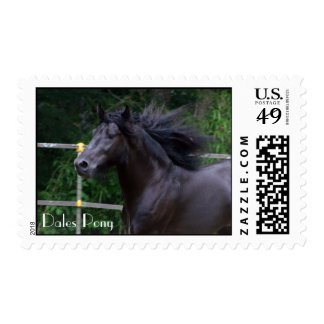 Dales Pony head stamp