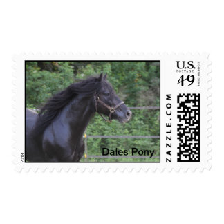 Dales Pony stamp
