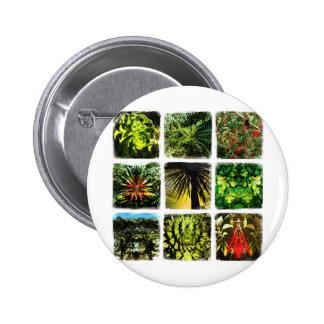 Dali Plants Pins