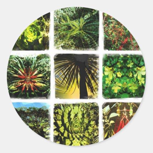 Dali Plants Classic Round Sticker