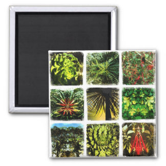 Dali Plants Refrigerator Magnets