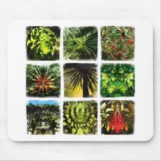 Dali Plants Mousepads