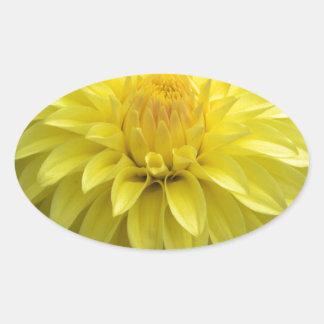 Dalia amarilla en productos múltiples pegatina ovalada