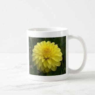 Dalia amarilla en productos múltiples taza básica blanca