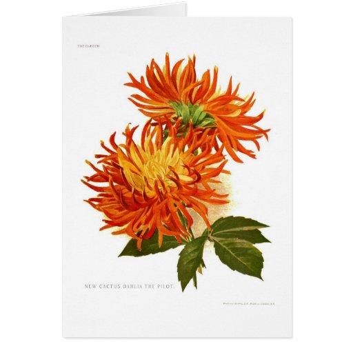 Dalia del cactus tarjeta de felicitación