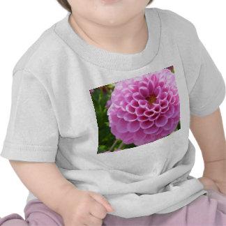 Dalia Camiseta