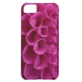 Dalia púrpura del panal en productos múltiples