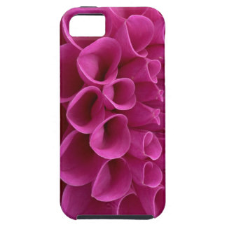 Dalia púrpura del panal en productos múltiples iPhone 5 Case-Mate protectores