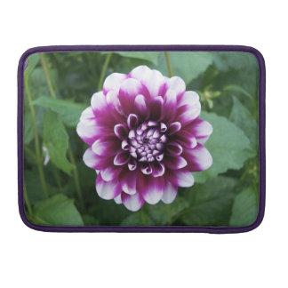 Dalia púrpura y blanca funda para macbooks