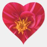 Dalia roja bonita calcomanías de corazones