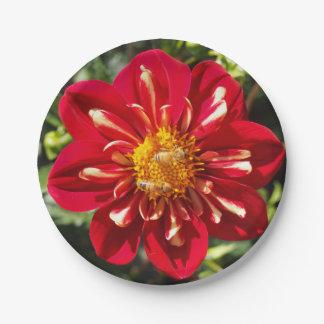 """Dalia roja con los pares de la abeja - 7"""" placas platos de papel"""