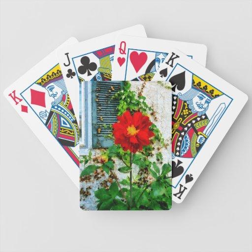 Dalia roja por la ventana cartas de juego