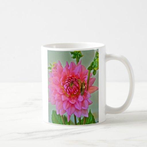 Dalia rosada con la mariposa taza