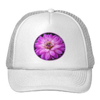 Dalia violeta/púrpura gorras de camionero