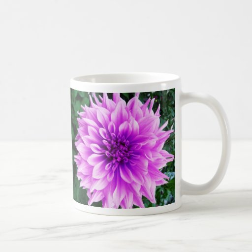 Dalia violeta rosada taza