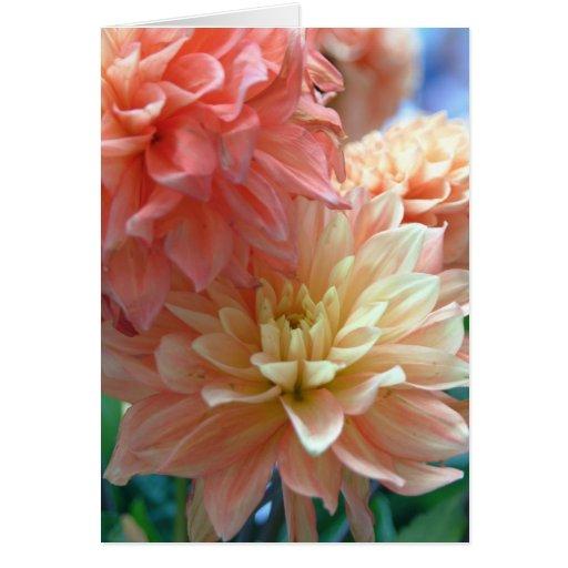 dalias anaranjadas claras 2 tarjeta de felicitación
