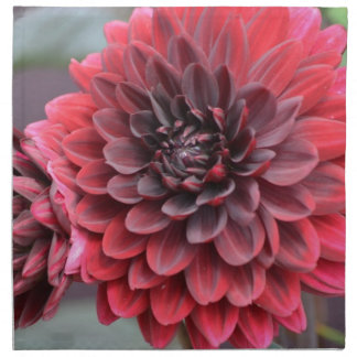 Dalias rojas florecientes servilletas