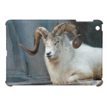 Dall Sheep iPad Mini Case