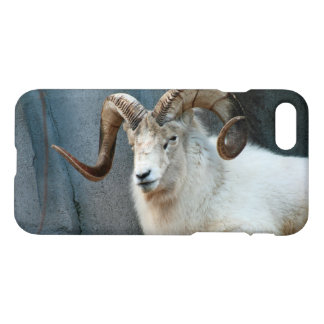 Dall Sheep iPhone 7 case