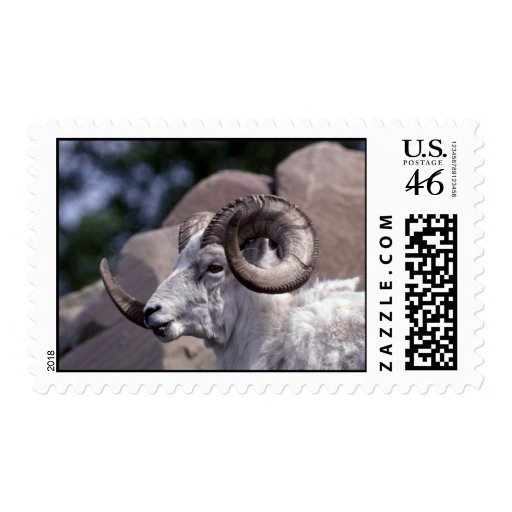 Dall sheep (Large ram) Postage Stamps