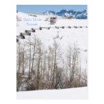 Dallas Divide, Colorado Post Cards