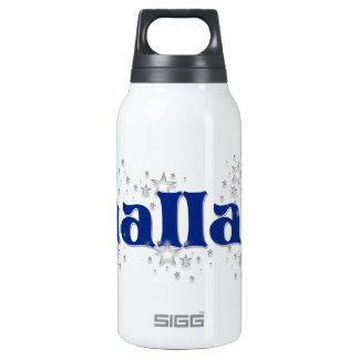 DALLAS INSULATED WATER BOTTLE
